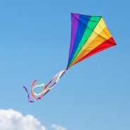Event: Let's Go Fly a Kite on April 30th